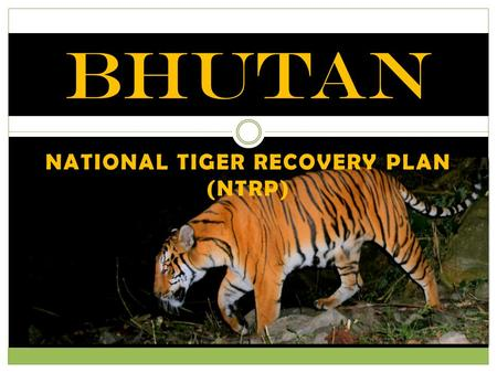 NATIONAL TIGER RECOVERY PLAN (NTRP) BHUTAN. Long Term Strategic Goal By 2022, tiger meta-population in Bhutan thrives and co-exists harmoniously with.
