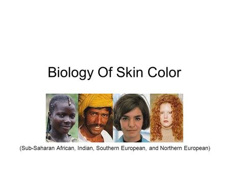 Biology Of Skin Color (Sub-Saharan African, Indian, Southern European, and Northern European)
