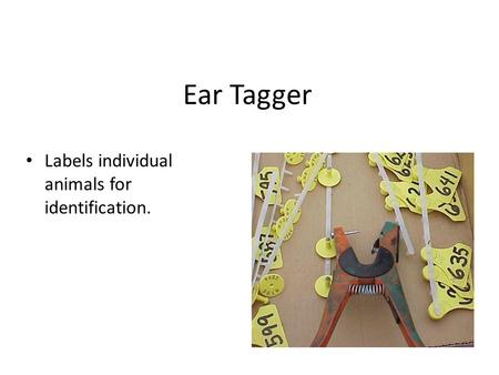 Ear Tagger Labels individual animals for identification.