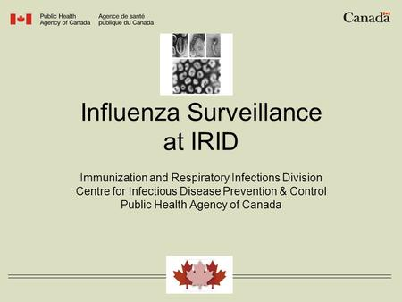Influenza Surveillance at IRID Immunization and Respiratory Infections Division Centre for Infectious Disease Prevention & Control Public Health Agency.