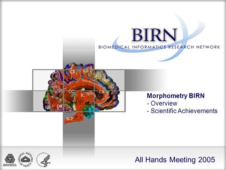 All Hands Meeting 2005 Morphometry BIRN - Overview - Scientific Achievements.