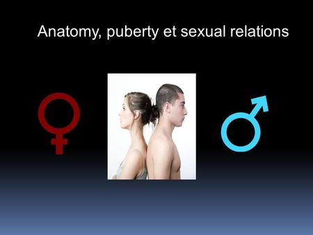 Anatomy, puberty et sexual relations. Objectives : -Human body anatomy - Male reproductive system parts - Female reproductive system parts - How does.