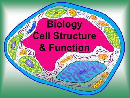 Biology Cell Structure & Function