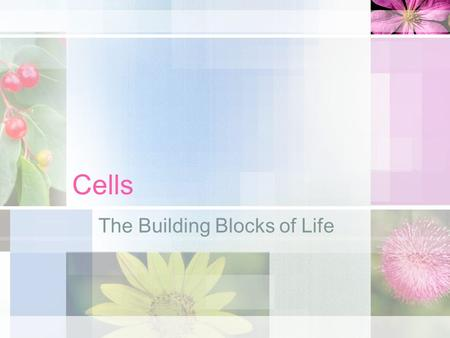 Cells The Building Blocks of Life. The cell is the structural and functional unit of all known living organisms. It is the simplest unit of an organism.