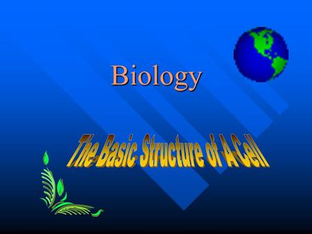Biology CELL CELL The basic unit of structure and function in living organisms. The basic unit of structure and function in living organisms. Extremely.