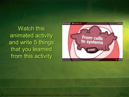 Watch this animated activity and write 5 things that you learned from this activity Day 1