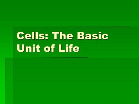 Cells: The Basic Unit of Life. Organization of Life  Everything has a least one cell  Many living things exist as only one cell  Other living things.