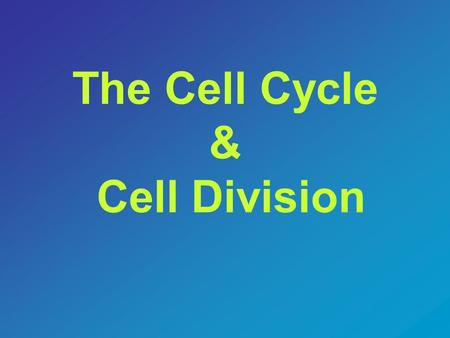 The Cell Cycle & Cell Division. The Cell Cycle