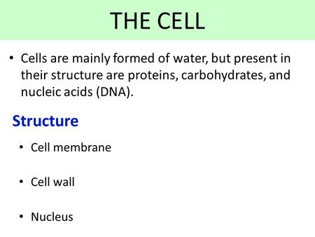 THE CELL Cells are mainly formed of water, but present in their structure are proteins, carbohydrates, and nucleic acids (DNA). Structure Cell membrane.