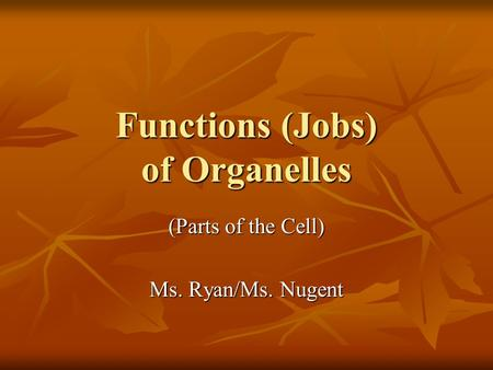 Functions (Jobs) of Organelles (Parts of the Cell) Ms. Ryan/Ms. Nugent.