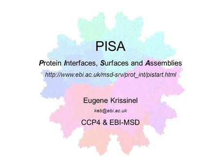 Protein Interfaces, Surfaces and Assemblies
