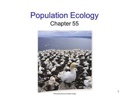 1 Population Ecology Chapter 55. 2 Environmental Challenge Ecology: the study of how organisms relate to one another and to their environments Abiotic: