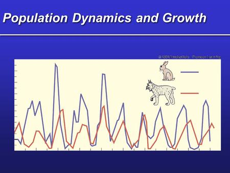 Population Dynamics and Growth. Exponential Growth Time (t) Population size (N) -ideal habitat -maximum reproduction -unlimited resources Increase often.