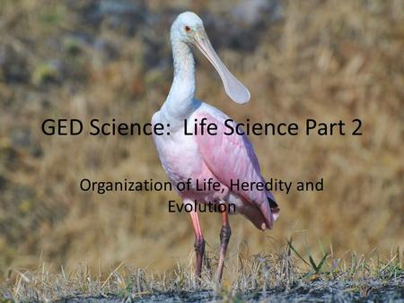 GED Science: Life Science Part 2 Organization of Life, Heredity and Evolution.