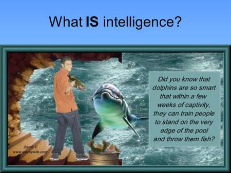 What IS intelligence?.