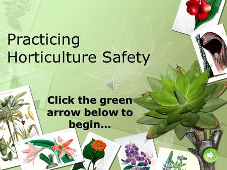 Click the green arrow below to begin… Practicing Horticulture Safety.
