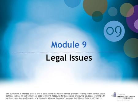Module 9 Legal Issues This curriculum is intended to be a tool to assist domestic violence service providers offering victim services (such as those outlined.