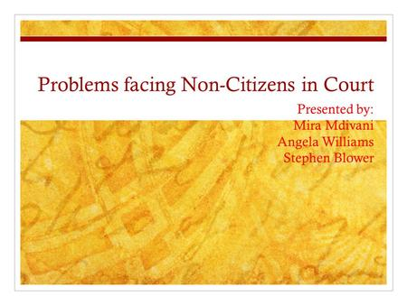 Problems facing Non-Citizens in Court Presented by: Mira Mdivani Angela Williams Stephen Blower.
