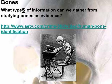 Forensic Anthropology s Forensic Anthropology : S tudying Bones What type s of information can we gather from studying bones as evidence?