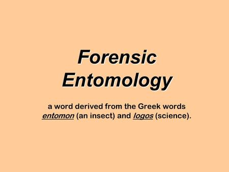 Forensic Entomology a word derived from the Greek words entomon (an insect) and logos (science).