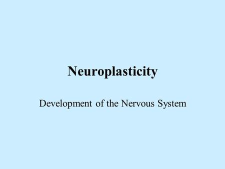 Neuroplasticity Development of the Nervous System.