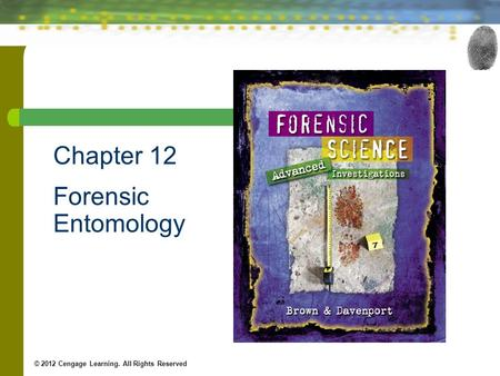 Chapter 12 Forensic Entomology © 2012 Cengage Learning. All Rights Reserved.