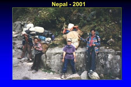 Nepal - 2001. STAPHYLOCOCCUS n Staphylococcus causes diseases ranging from minor skin infections to life-threatening infections such as pneumonia, endocarditis,