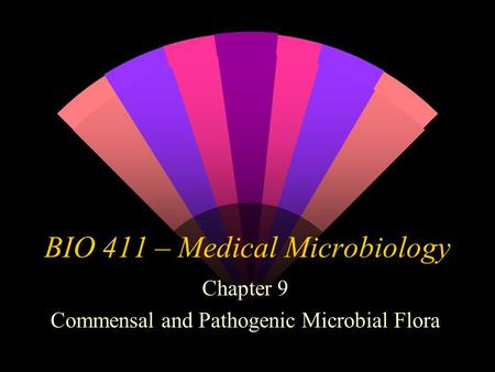 BIO 411 – Medical Microbiology Chapter 9 Commensal and Pathogenic Microbial Flora.