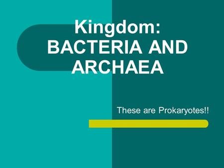 Kingdom: BACTERIA AND ARCHAEA These are Prokaryotes!!