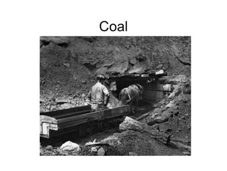 Coal. Coal Facts Most abundant fossil fuel –400 year supply 66% of known coal is located in the U.S. U.S. is 2 nd largest consumer of coal –China is 1.