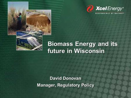 Biomass Energy and its future in Wisconsin David Donovan Manager, Regulatory Policy David Donovan Manager, Regulatory Policy.