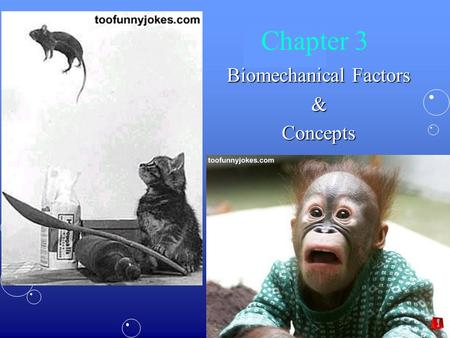 Biomechanical Factors &Concepts Chapter 3. Biomechanics:Biomechanics: –The study of mechanics as it relates to functional and anatomical analysis of biological.