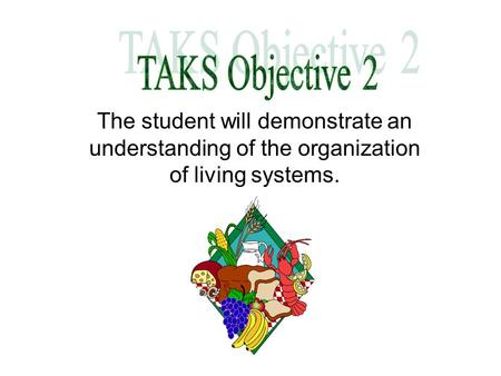 TAKS Objective 2 The student will demonstrate an understanding of the organization of living systems.