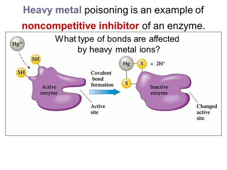 Heavy metal poisoning is an example of noncompetitive inhibitor of an enzyme. What type of bonds are affected by heavy metal ions?