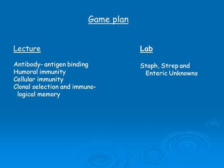 Game plan Lecture Lab Antibody- antigen binding Staph, Strep and