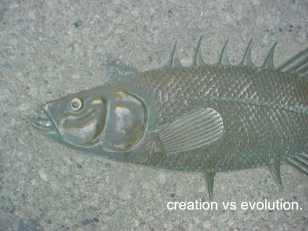 Creation vs evolution.. arguments for evolution. micro into macro. presumed. creation is a cop out.