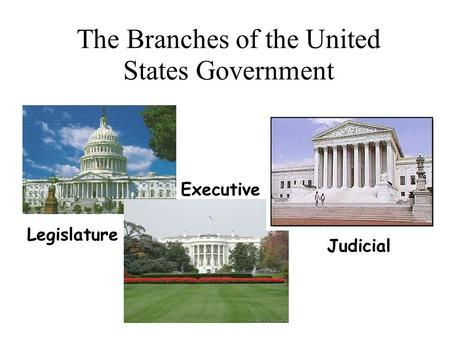 The Branches of the United States Government Legislature Executive Judicial.