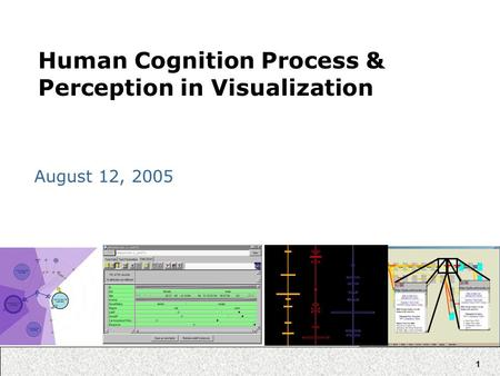 1 Human Cognition Process & Perception in Visualization August 12, 2005.