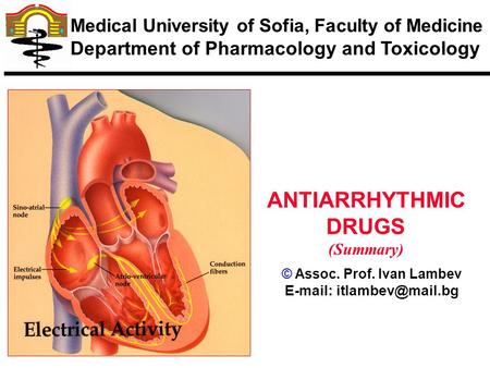 © Assoc. Prof. Ivan Lambev   ANTIARRHYTHMIC DRUGS (Summary) Medical University of Sofia, Faculty of Medicine Department of Pharmacology.