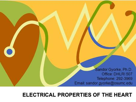 ELECTRICAL PROPERTIES OF THE HEART Sandor Gyorke, Ph.D. Office: DHLRI 507 Telephone: 292-3969