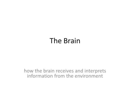 The Brain how the brain receives and interprets information from the environment.