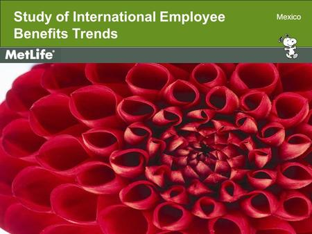 Metropolitan Life Insurance Company 200 Park Avenue, New York, NY 10166 11085729(exp1009)MLIC-LD Study of International Employee Benefits Trends Mexico.