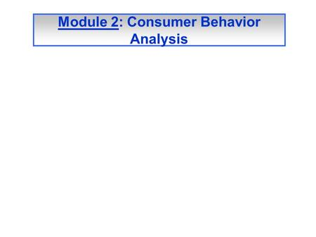 Module 2: Consumer Behavior Analysis. Factors affecting the Online Consumer's Behavior Other Stimuli: Personal and environmental Uncontrollable Factors.