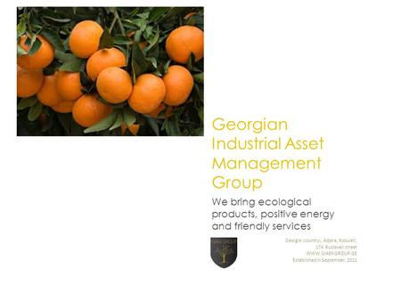 Georgian Industrial Asset Management Group We bring ecological products, positive energy and friendly services Georgia (country), Adjara, Kobuleti, 174.