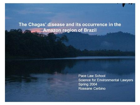The Chagas' disease and its occurrence in the Amazon region of Brazil Pace Law School Science for Environmental Lawyers Spring 2004 Roseane Cerbino.