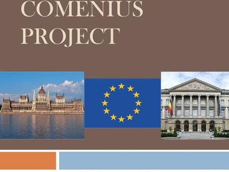 COMENIUS PROJECT. Health insurance -medicines -dental work -vaccinations -prosthesis -transport -fertility treatments Medical costs… Belgium - Orthodontic.