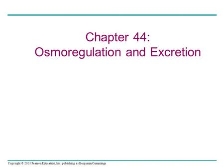 Copyright © 2005 Pearson Education, Inc. publishing as Benjamin Cummings Chapter 44: Osmoregulation and Excretion.