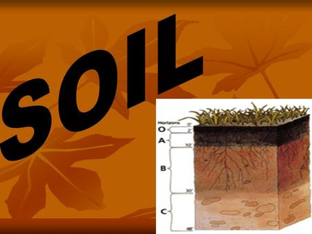 Soil is one of the most important natural <strong>media</strong> which support the growth of plants. Soil is, a complex mixture of several components. Various physical,