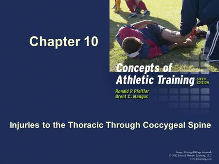 Chapter 10 Injuries to the Thoracic Through Coccygeal Spine.