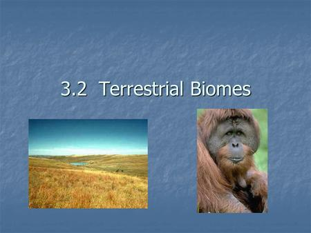 3.2 Terrestrial Biomes Today's Objectives Objective #1: Relate latitude and the three major climate zones Objective #1: Relate latitude and the three.